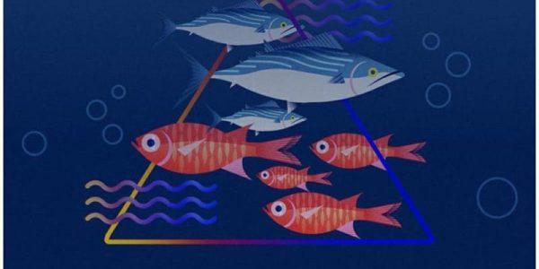 Selamatkan Kekayaan Laut Indonesia!